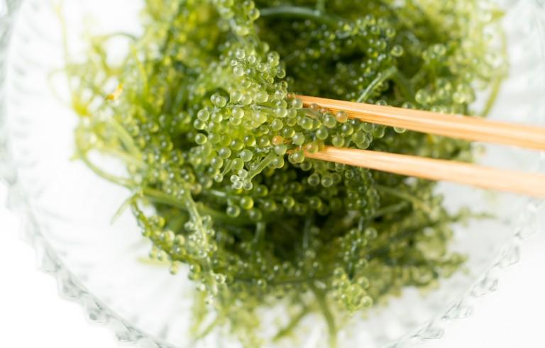 お土産店「みき屋」